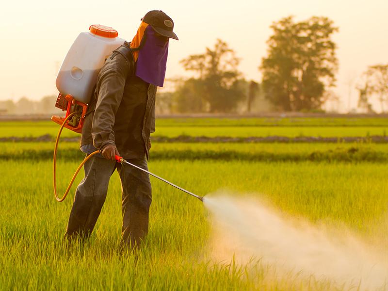 使用方法によっては危険! 「農薬事故」を防ぐには?   AGRI JOURNAL